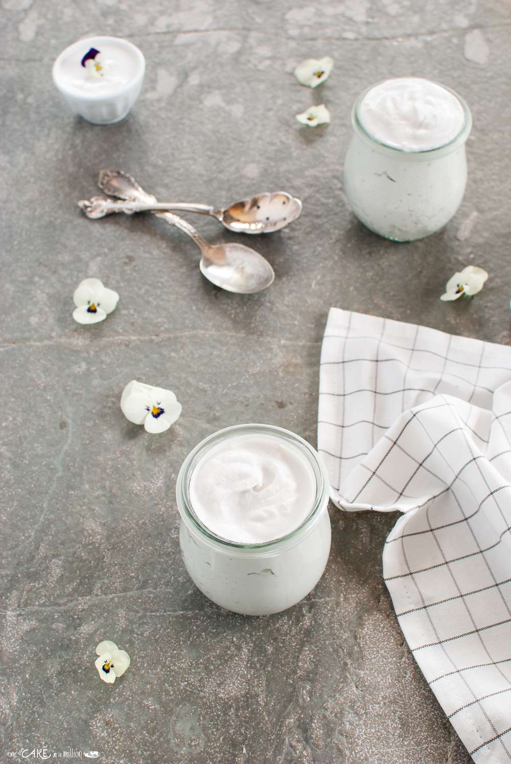 yogurt veg di cocco
